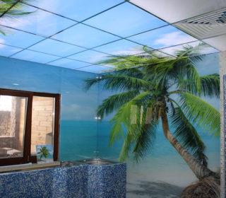 Панно в бассейн пальмы