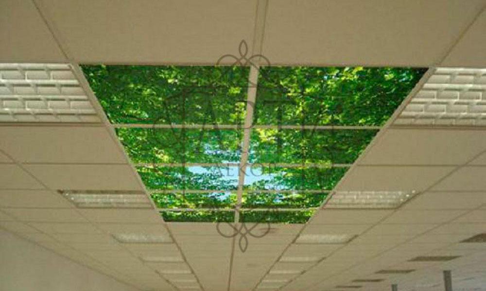Потолок листва