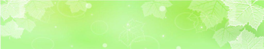 листья клена на зеленом фоне
