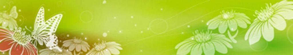 цветы бабочки на зеленом фоне