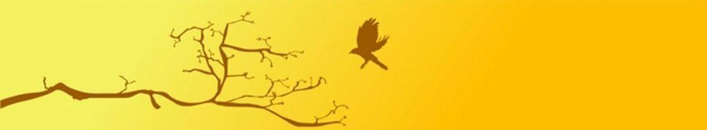 птица ветка дерева
