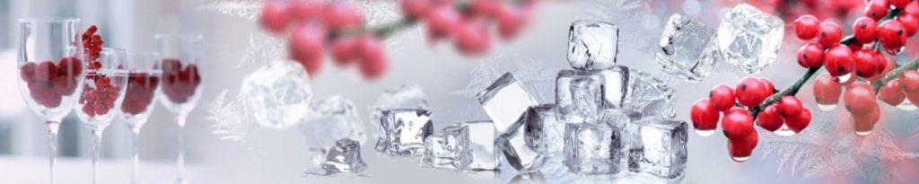 кубики льда с рябиной