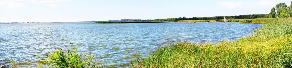 тростниковое озеро