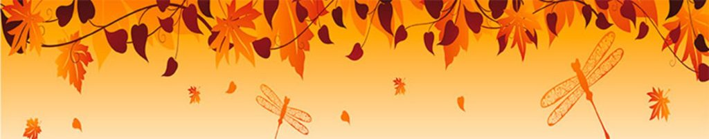 Осень листья стрекозы