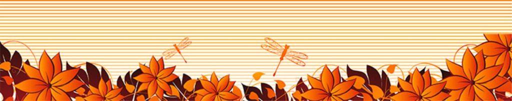 Оранжевые цветы стрекозы