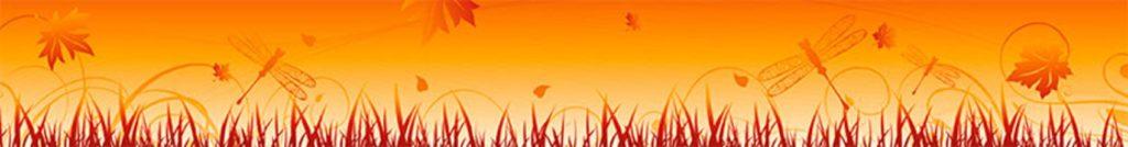 Трава листья стрекозы