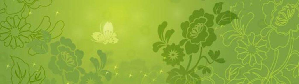 Цветы и бабочка на зеленом фоне