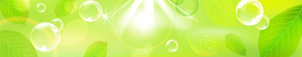 Зеленый листья и пузырьки