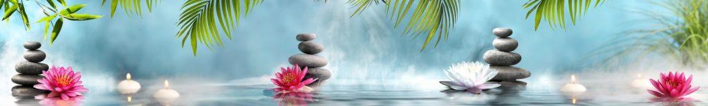 Водные лилии и камни