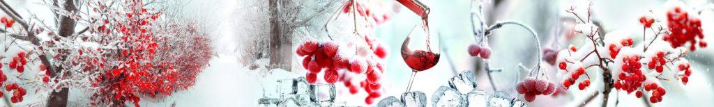 Зима и ягоды