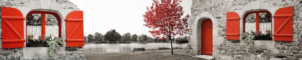 Пейзаж черно-белый с красным