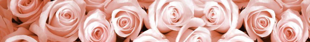 Розовые розы скинали