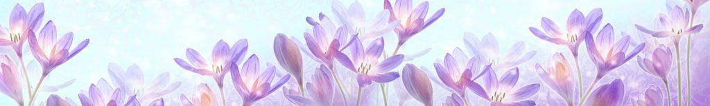 Скинали для кухни цветы фиолетовые