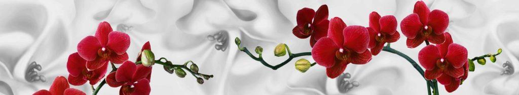 Красные орхидеи для кухонного фартука