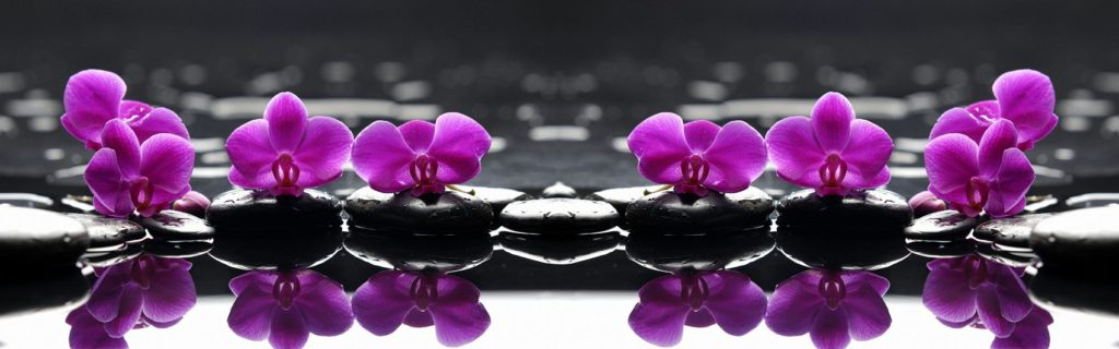 Кухонный фартук орхидеи фиолетовые