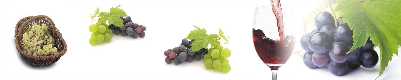 Черный виноград и вино