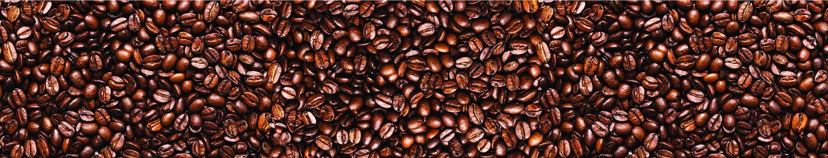 Зёрна кофейного дерева