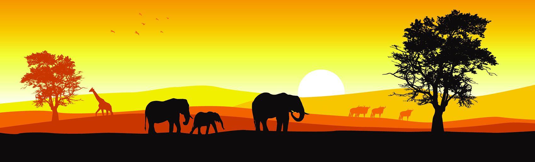 Слоны на закате в саванне