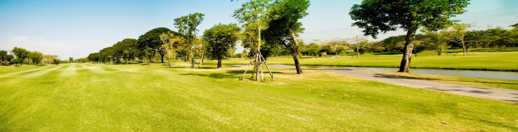 Зелёный парк